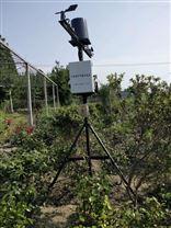 农业环境在线监测仪