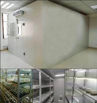人工氣候室