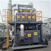 活性炭催化燃烧专业设备
