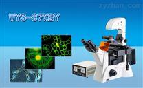 倒置荧光显微镜WYS-37XBY