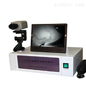黑白紅外乳腺診斷儀