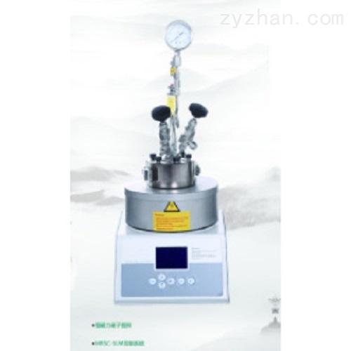 微型高压反应釜(50ML)