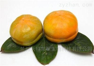 柿叶黄酮 柿子叶提取物  包邮