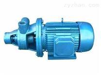 1W单级直连式旋涡泵