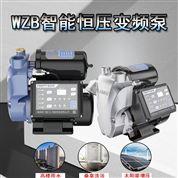 自来水变频增压泵自动恒压家用泵