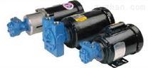美國泰悉爾Tuthill齒輪泵