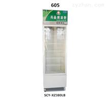 605普通款药品阴凉柜(单门)