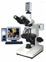 偏光显微镜 XPR-500P