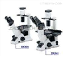奥林巴斯倒置荧光显微镜