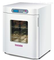上海智城ZXDP-B2160隔水式电热恒温箱