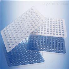 0.1ml 无裙边96孔PCR板 透明 乳白