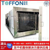 制药冷冻干燥机  冻干食品生产线